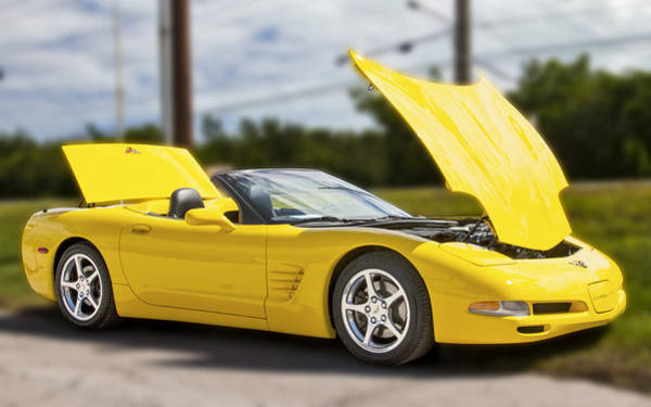 Photograph - Yellow Chevrolet Corvette by Bob Slitzan