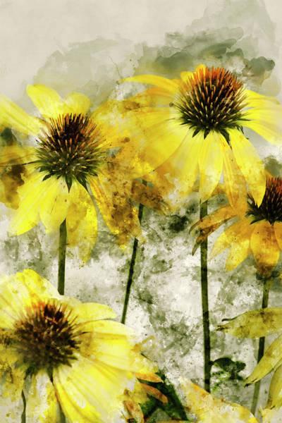 Wall Art - Mixed Media - Yellow Coneflowers 1 by Kevin O'Hare