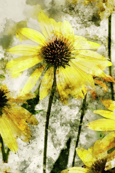 Wall Art - Mixed Media - Yellow Coneflowers 2 by Kevin O'Hare