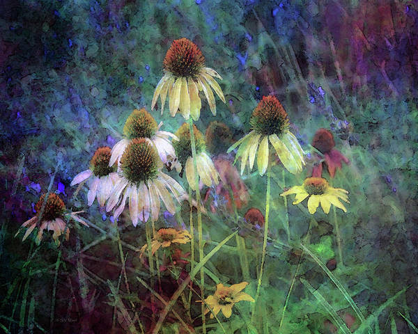 Photograph - Yellow Coneflowers And Sage 1631 Idp_2 by Steven Ward