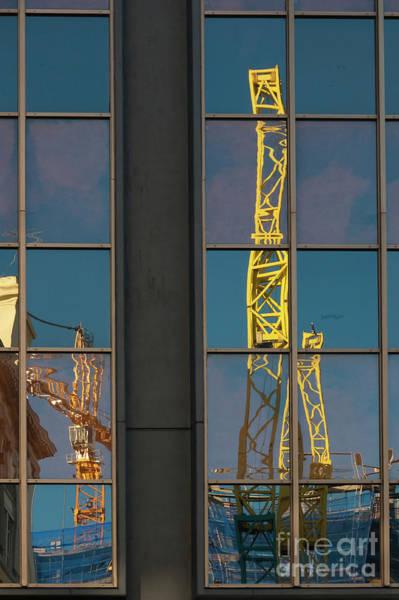Photograph - Yellow Cranes by Werner Padarin
