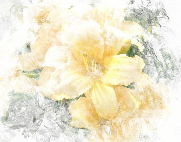 Photograph - Yellow Daylily by Michele A Loftus