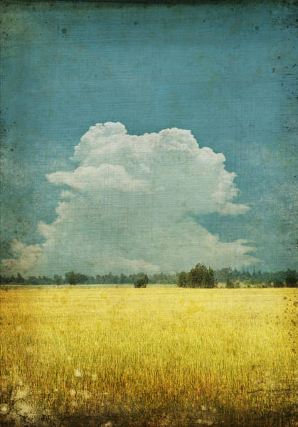 Vintage Photograph - Yellow Field On Old Grunge Paper by Setsiri Silapasuwanchai