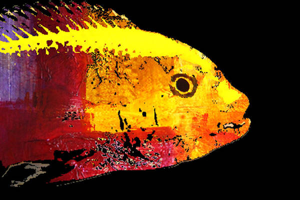 California Coast Digital Art - Yellow Fish Abstract by Nancy Merkle
