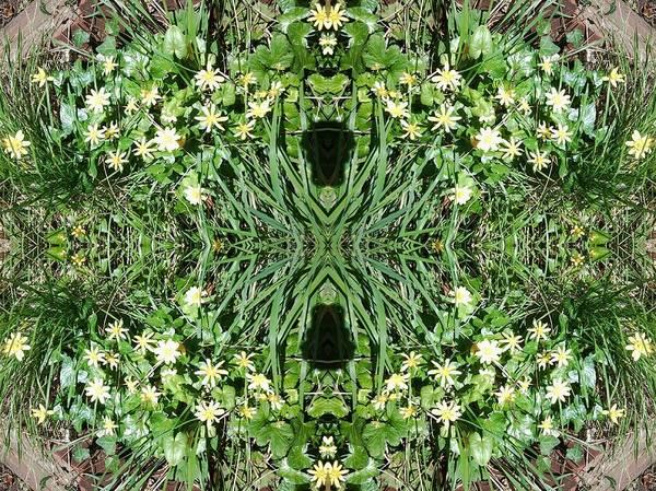 Photograph - Yellow Flower Mandala 1 by Julia Woodman