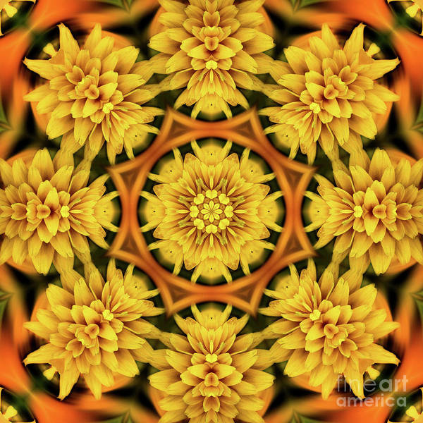 Digital Art - Yellow Flower Petals Abstract by Smilin Eyes  Treasuress