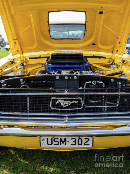 Photograph - Yellow Ford Mustang 02 by Rick Piper Photography