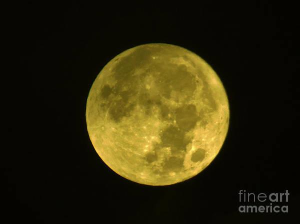 Photograph - Yellow Full Moon by D Hackett
