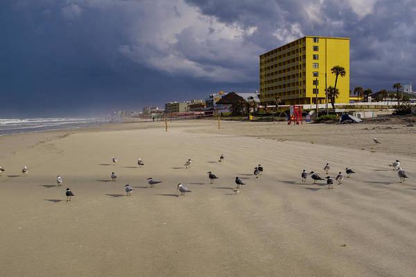 Yellow Hotel Blue Sky And Birds On Daytona Beach Florida Art Print