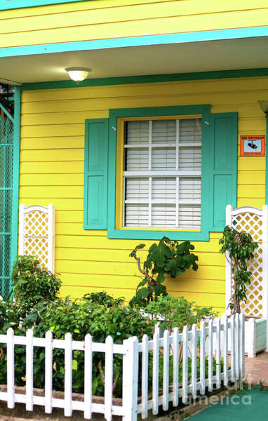 Photograph - Yellow House At Bocas Del Toro by John Rizzuto