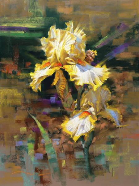 Yellow Iris II Art Print