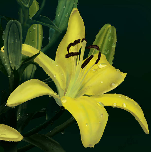 Painting - Yellow Lilly by Wade Clark