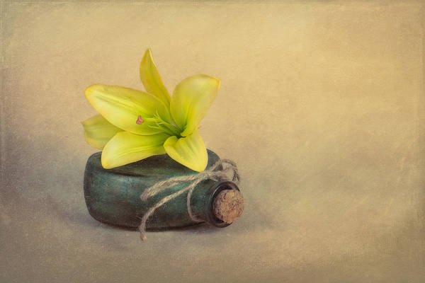 Tan Photograph - Yellow Lily And Green Bottle by Tom Mc Nemar