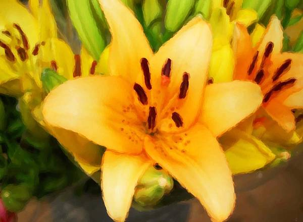 Painting - Yellow Lily by Michael Thomas