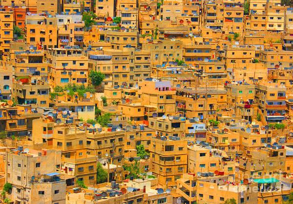 Photograph - Yellow Maze by David Birchall
