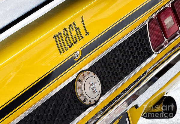 Ford Motor Company Photograph - Yellow N Black by Tim Gainey