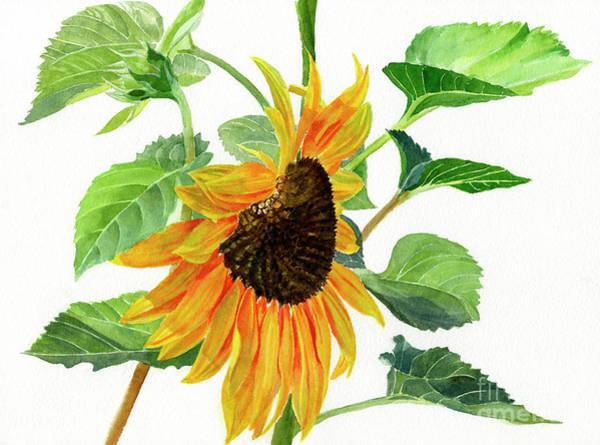 Wall Art - Painting - Yellow Orange Sunflower by Sharon Freeman