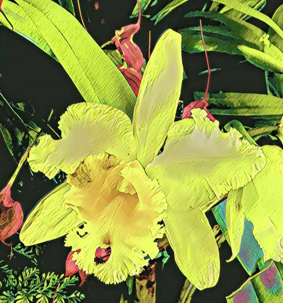 Photograph - Yellow Orchid Aloha by Joalene Young