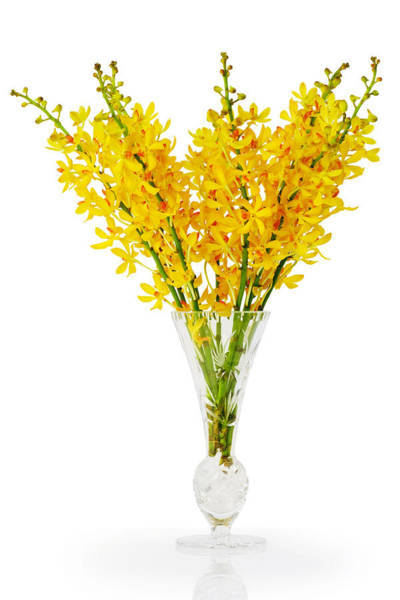 Soft Focus Photograph - Yellow Orchid In Crystal Vase by Atiketta Sangasaeng