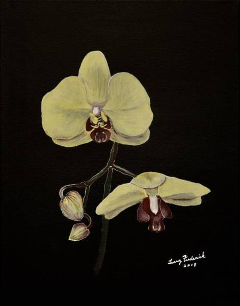 Painting - Yellow Orchid by Terry Frederick