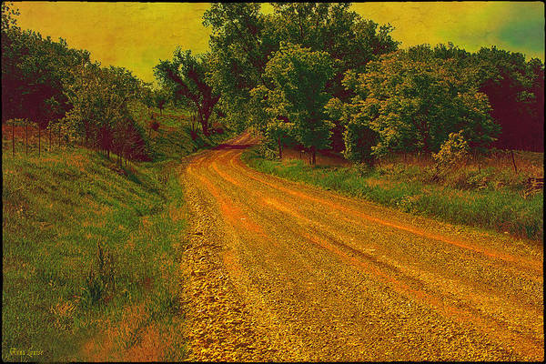 Photograph - Yellow Oz Road by Anna Louise