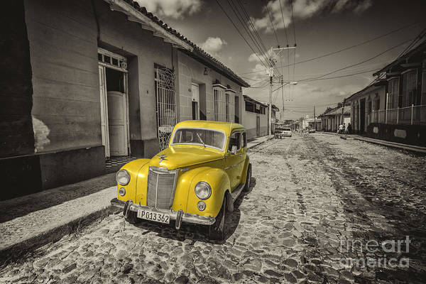 Wall Art - Photograph - Yellow Prefect  by Rob Hawkins