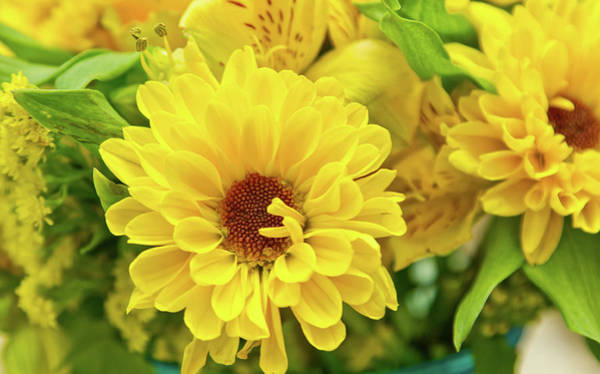 Photograph - Yellow by Ree Reid