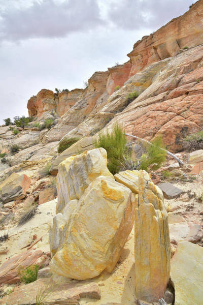 Photograph - Yellow Rocks by Ray Mathis