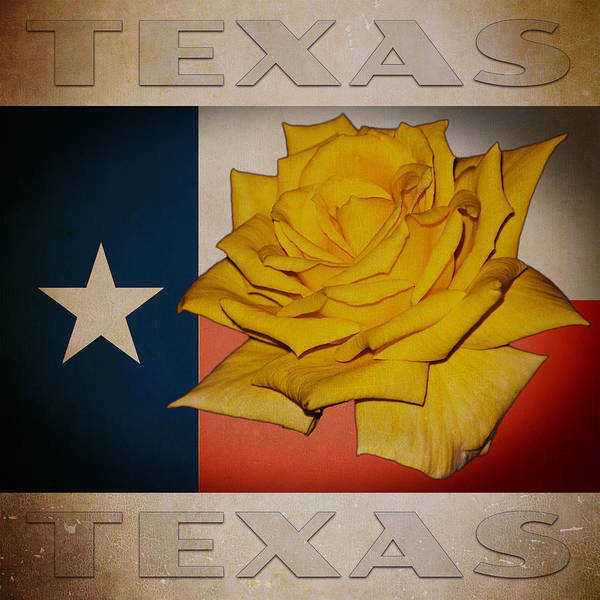 Digital Art - Yellow Rose On Texas by William Havle