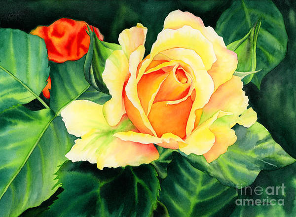 Peach Flower Wall Art - Painting - Yellow Roses by Hailey E Herrera