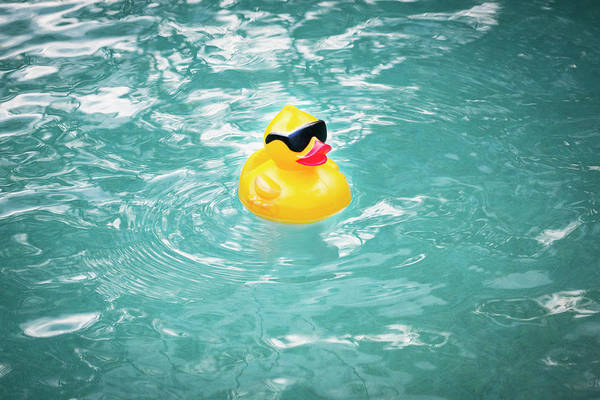 Rubber Ducky Photograph - Yellow Rubber Duck by Rich Franco