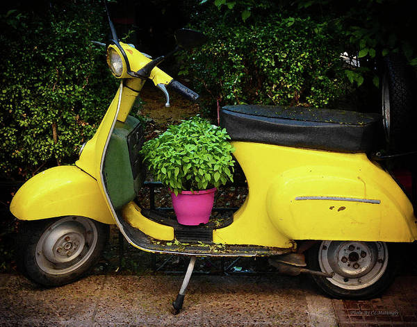 Photograph - Yellow Scooter by Coleman Mattingly