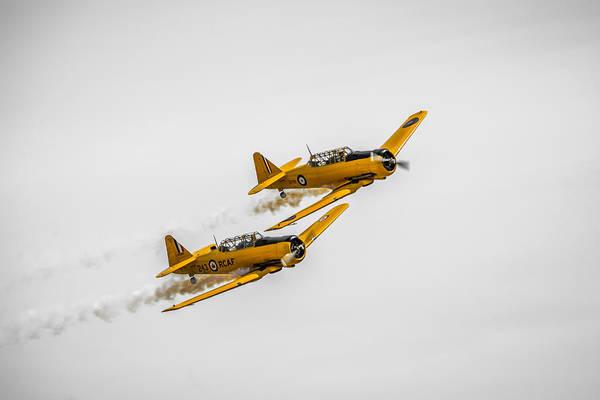 Lethbridge Photograph - Yellow Thunder Harvard Team by Bill Cubitt