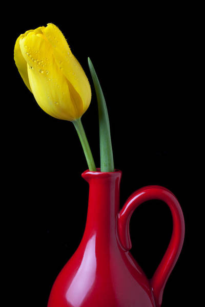 Wall Art - Photograph - Yellow Tulip In Red Pitcher by Garry Gay