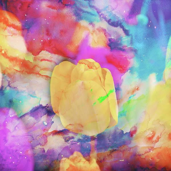 Wall Art - Photograph - Yellow Tulip by Toni Hopper