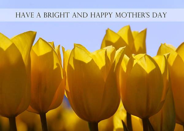 Photograph - Yellow Tulips For Mothers Day Card by Patricia Strand