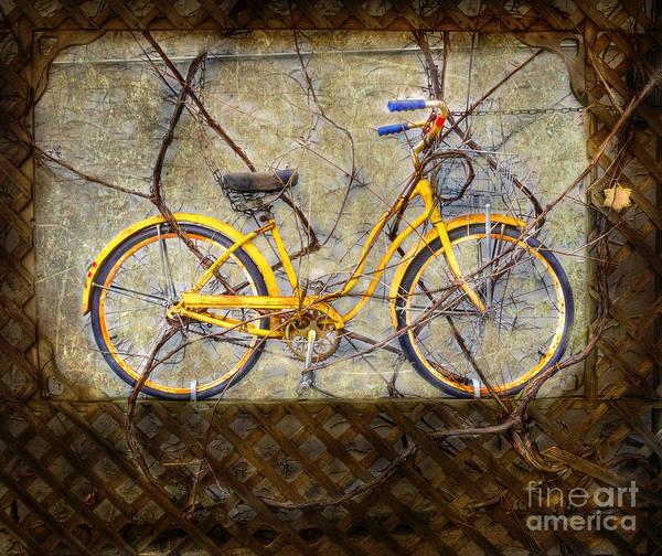 Photograph - Yellow Vine Bike by Craig J Satterlee