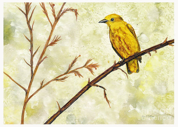 Painting - Yellow Warbler by Jan Killian