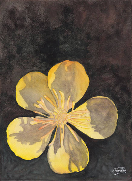 Painting - Yellow Wild Flower by Ken Powers