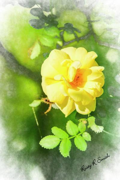 Digital Art - Yellow Wild Flower by Rusty R Smith