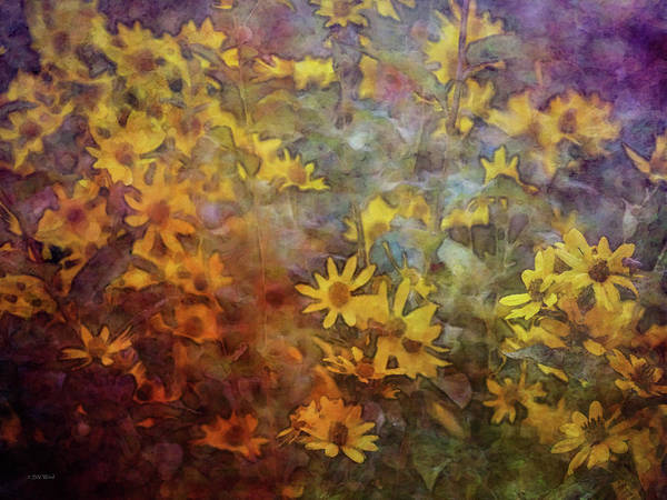 Photograph - Yellow Wildflowers 4852 Idp_2 by Steven Ward