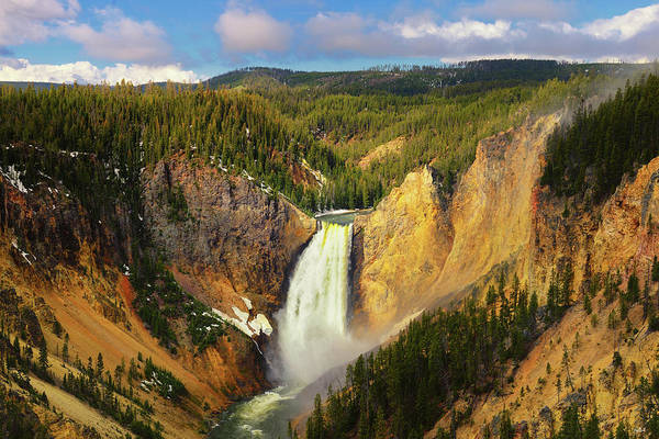 Photograph - Yellowstone Canyon Springtime by Greg Norrell