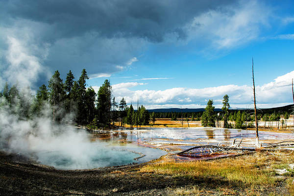 Photograph - Yellowstone Colors #1 by Scott Read