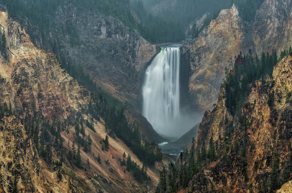 Photograph - Yellowstone Falls In The Mist by Loree Johnson