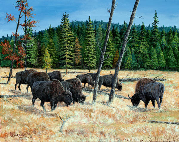 Wall Art - Painting - Yellowstone Grazers by Timithy L Gordon