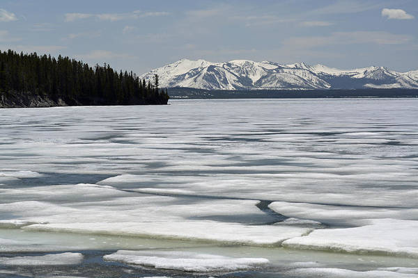 Photograph - Yellowstone Lake Spring Ice by Bruce Gourley