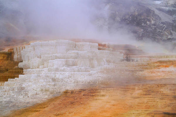 Photograph - Yellowstone Magic by Broderick Delaney