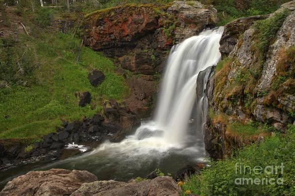 Photograph - Yellowstone Moose Falls by Adam Jewell