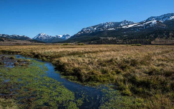 Photograph - Yellowstone Np Near Soda Butte by Alex Galkin