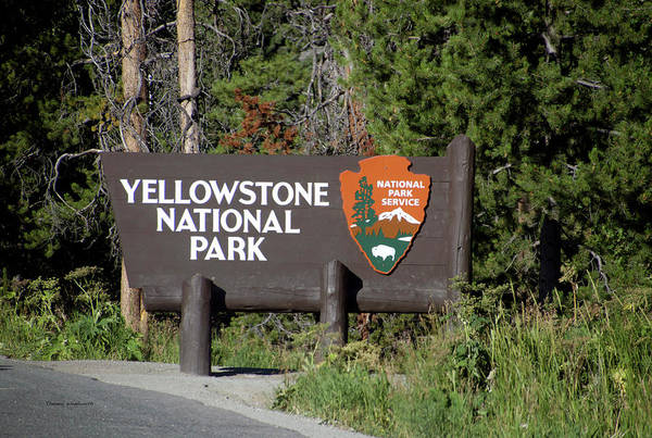 Wall Art - Photograph - Yellowstone Park East Entrance Signage by Thomas Woolworth